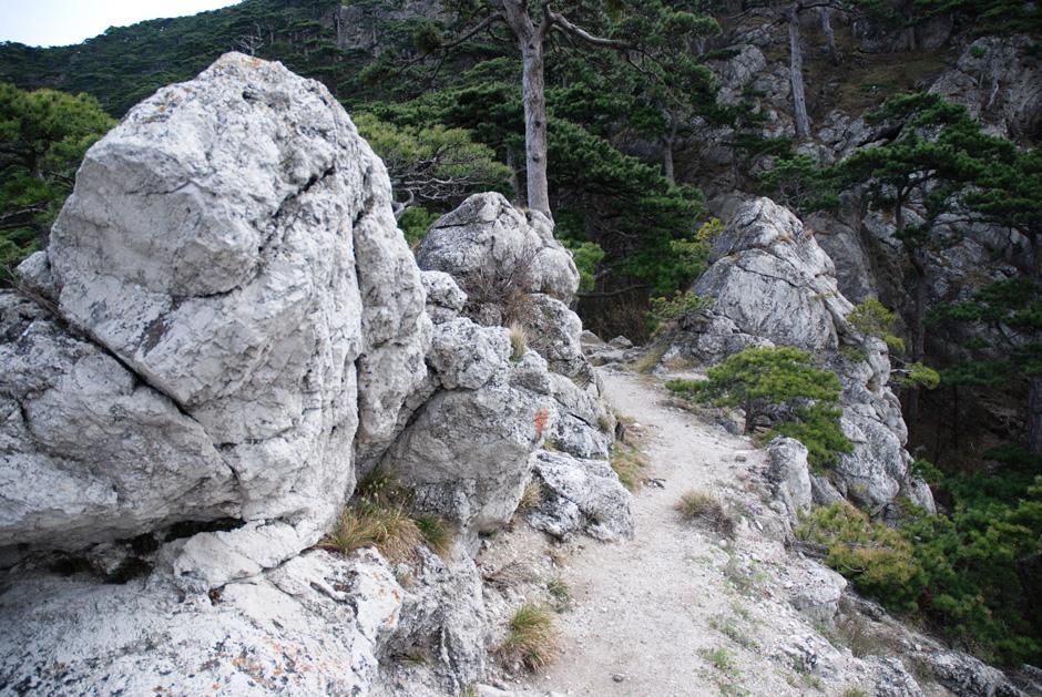 Mödlinger Klettersteig : Albert milde mödlinger klettersteig grat mit gehweg